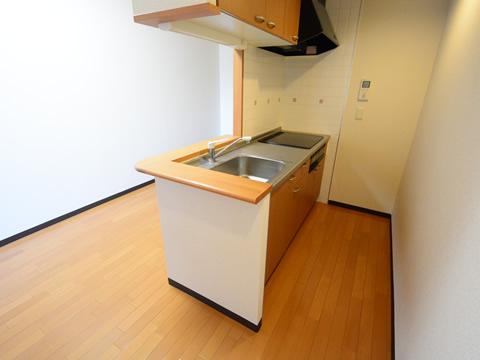 カウンターキッチン(3号室)